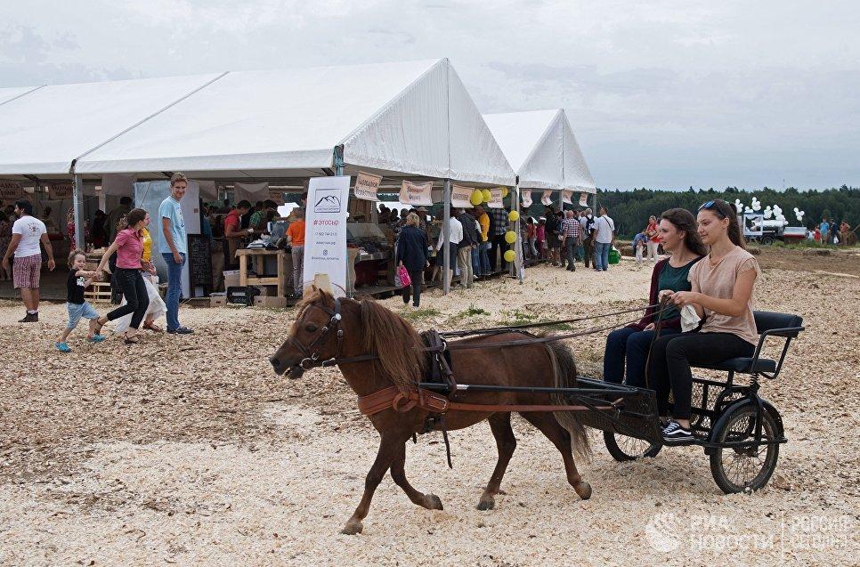 Посетители на фестивале фермеров – сыроваров в Московской области
