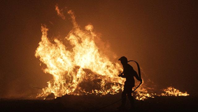 Пожарный борется с огнем на французском острове Корсика. 11 августа 2017