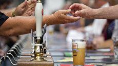 Большой британский фестиваль пива (Great British Bear Festival) в Лондоне