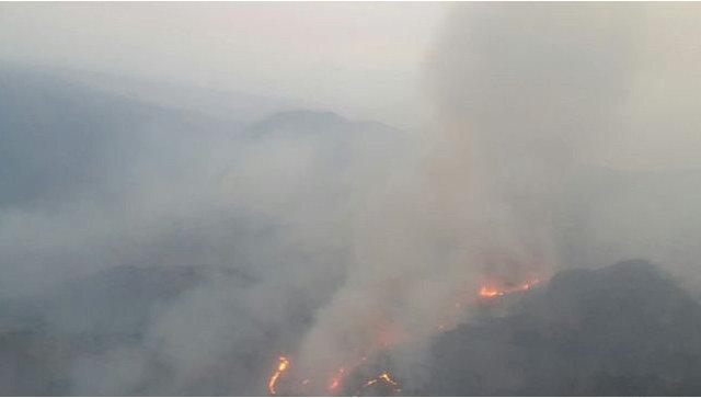 Посол Иван Волынкин: Россия предоставит миллион долларов на борьбу с лесными пожарами в Армении