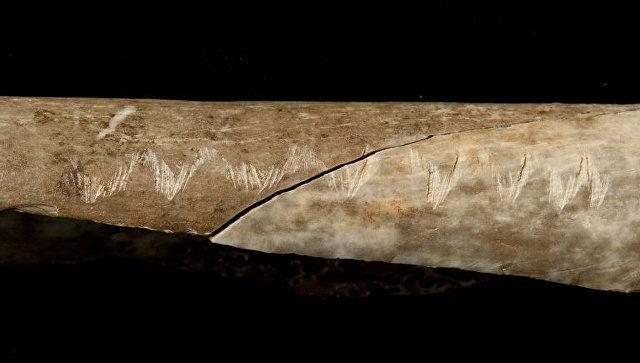 В Англии ученые обнаружили следы чудовищного первобытного обряда
