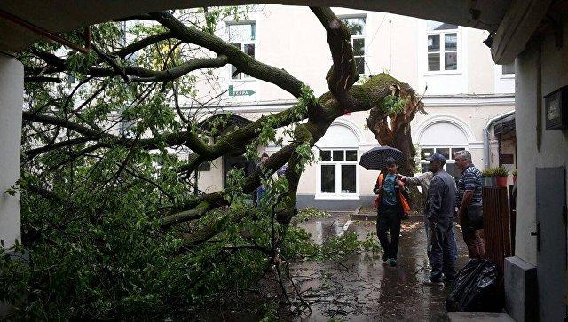 В Российской Федерации вдвое выросло число погодных катаклизмов