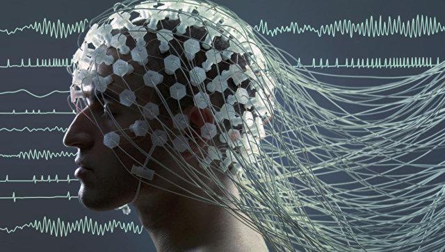 Ученые поведали , как использовать мозг по-максимуму