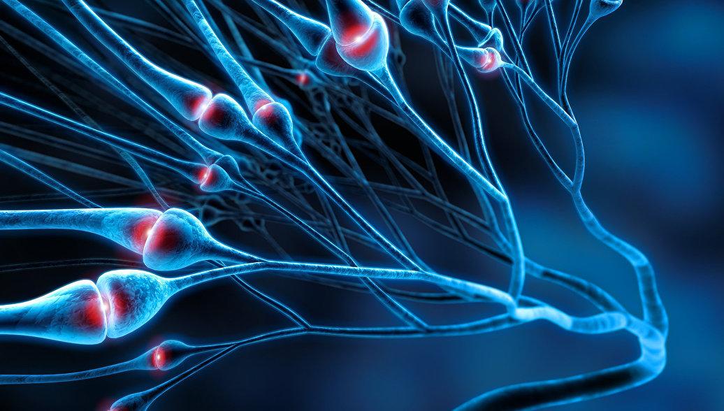 Болезнь Альцгеймера может передаваться при переливании крови, считают ученые