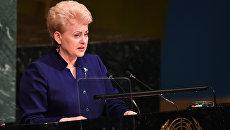 Президент Литвы Даля Грибаускайте во время выступления на заседании Генассамблеи ООН в Нью-Йорке, США. 19 сентября 2017