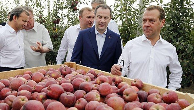 Рабочая поездка премьер-министра РФ Дмитрия Медведева в Адыгею. 22 сентября 2017