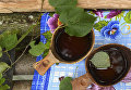 Продукты на молитвенно-дарительном столе в священно роще