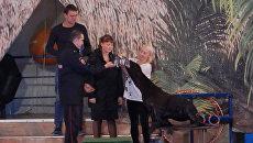 Морского котика наградили за помощь в поимке преступника в дельфинарии Петербурга