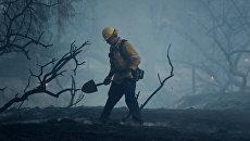 Пожарный тушит очаги возгорания в Ориндже, Калифорния, США. 9 октября 2017