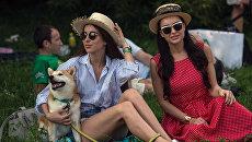 Отдыхающие на музыкальном фестивале под открытым небом Пикник Афиши в музее-заповеднике Коломенское. Архивное фото