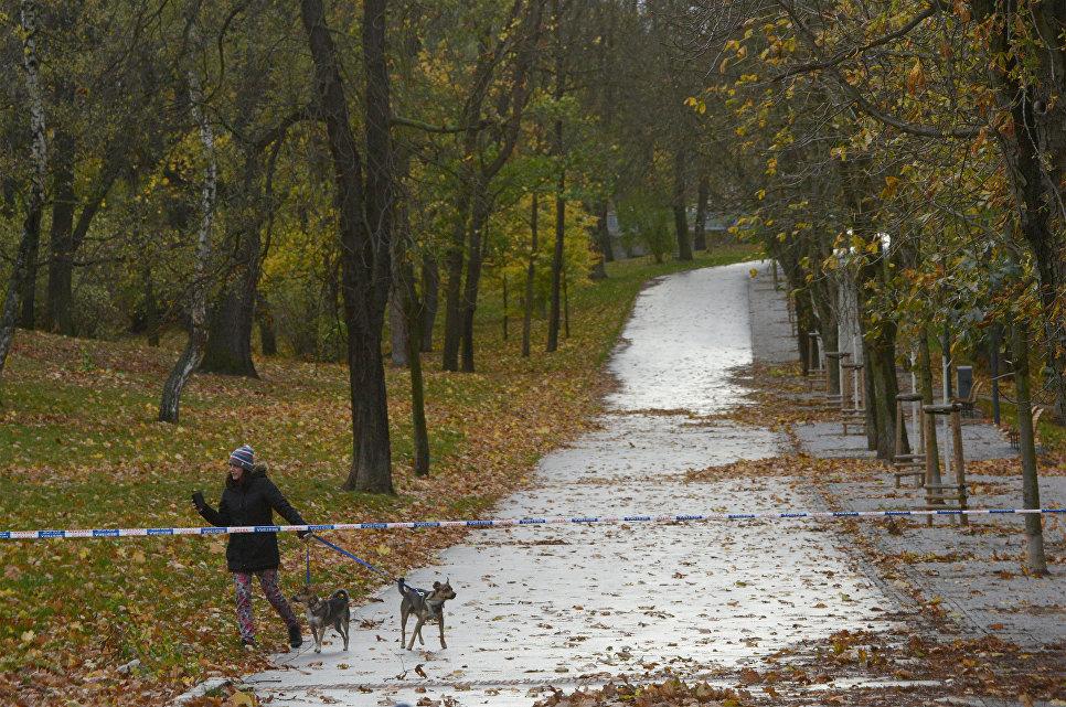 Женщина со своими собаками в парке Стромовка в Праге. 29 октября 2017
