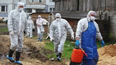 Сотрудники санитарных служб в деревне Озерки Окуловского района, где установлен карантин по африканской чуме свиней. 2012 год