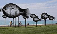 Рыбки в Кань-сюр-Мер