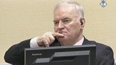 Сербский генерал Ратко Младич во время оглашения приговора в Международном трибунале по бывшей Югославии (МТБЮ). 22 ноября 2017