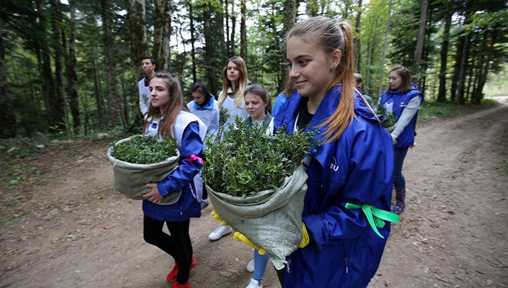 Год добровольца придаст импульс развитию волонтерского движения в России