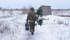 Военнослужащие Народной милиции ЛНР на передовых позициях