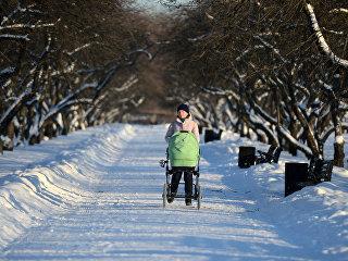 Женщина с коляской в парке Коломенское в Москве. Архивное фото