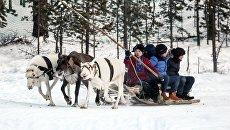 Китайские туристы катаются на оленьей упряжке. Архивное фото