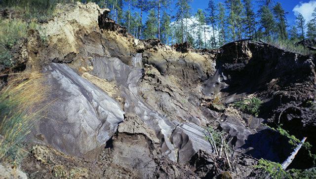 Ученые предупредили о климатической угрозе в Сибири