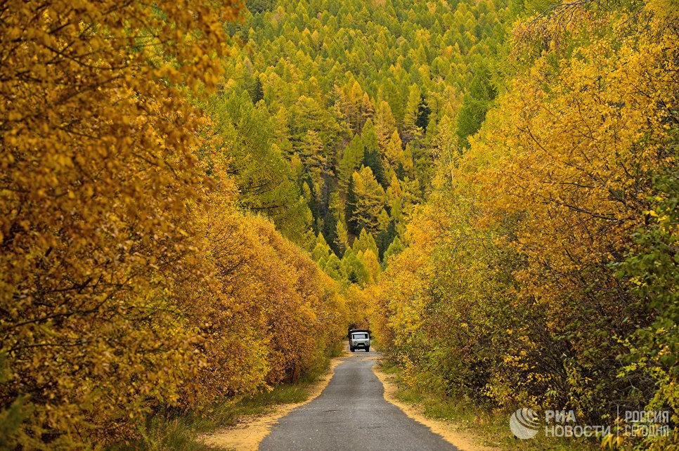 Автомобильная дорога в горах в Республике Тыва.