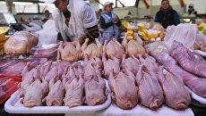 Прилавок с птицей в мясном отделе на Дорогомиловском рынке в Москве