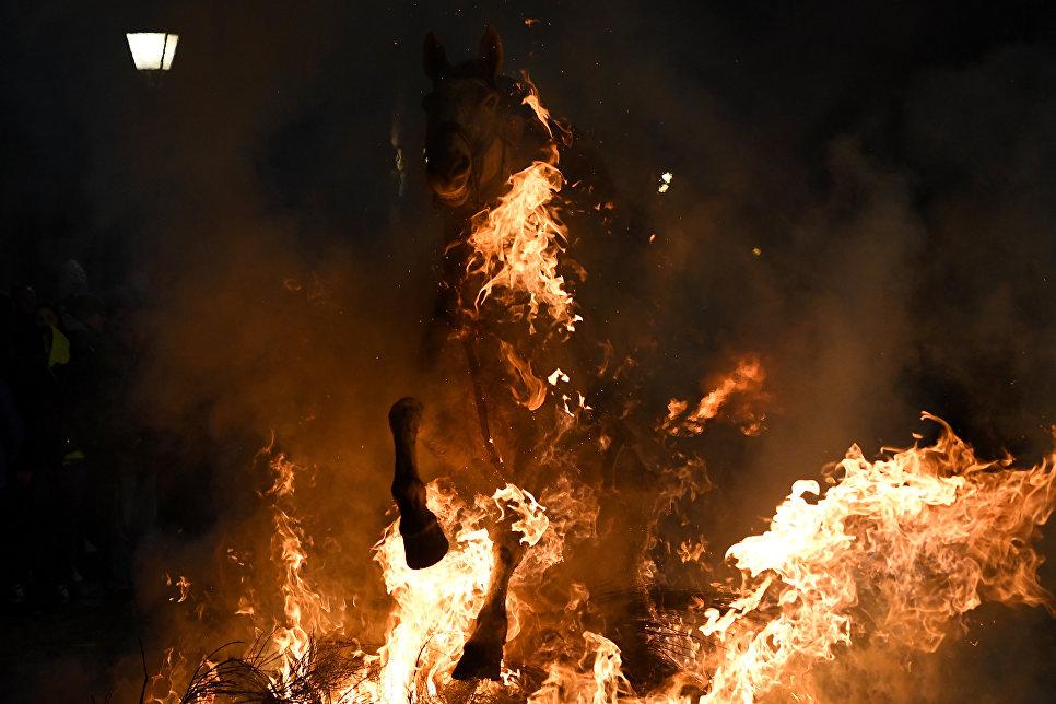 Всадник прыгает через костер во время огненного фестиваля Las Luminarias в Испании