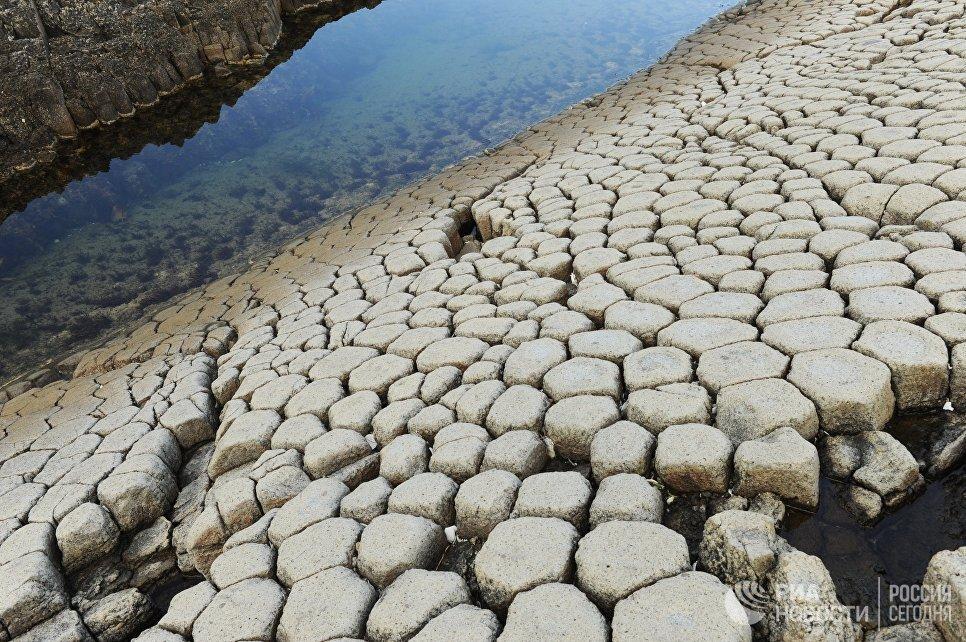 Базальты мыса Столбчатый на острове Кунашир