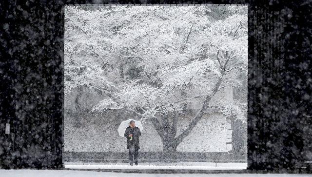 Снегопад в Японии. 22 января 2018 года