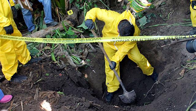 В мексиканском штате за год нашли более 340 тайных могил с сотнями тел