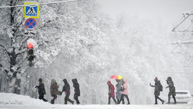 Люди на пешеходном переходе на Воробьевых горах во время снегопада. Архивное фото