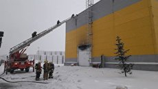Сотрудники МЧС во время тушения пожара в деревне Аннолово на заводе ТехноНиколь. 5 февраля 2018