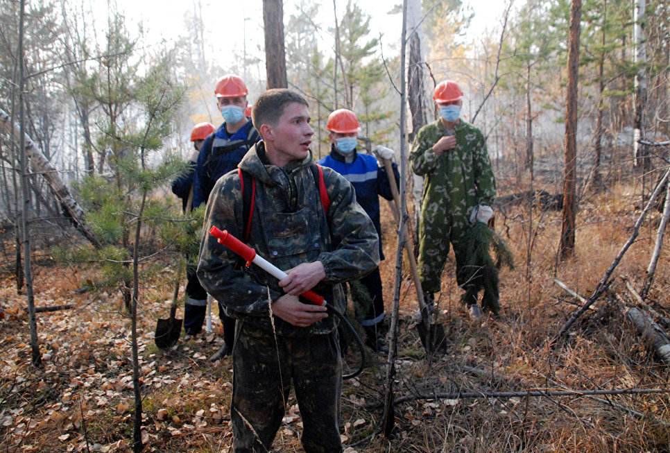Волонтеры тушат лесной пожар в районе Братска