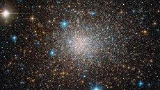 Шаровое скопление Terzan 5, где живут древнейшие звезды Галактики