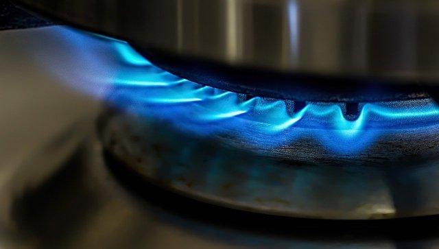 Пламя в газовой конфорке. Архивное фото
