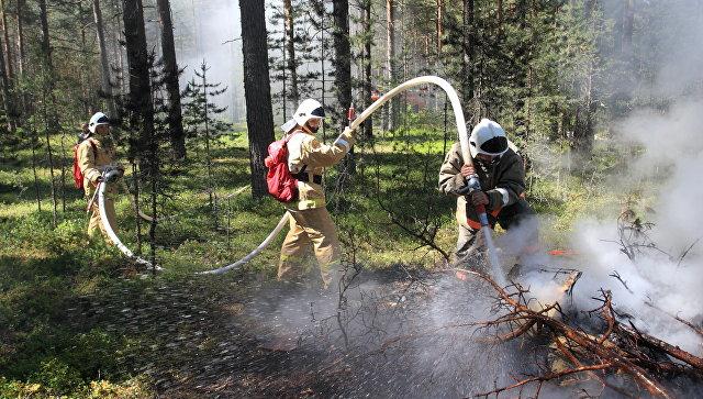 Сотрудники управления лесного хозяйства Минобороны России (Оборонлес) во время тушения пожара. Архивное фото