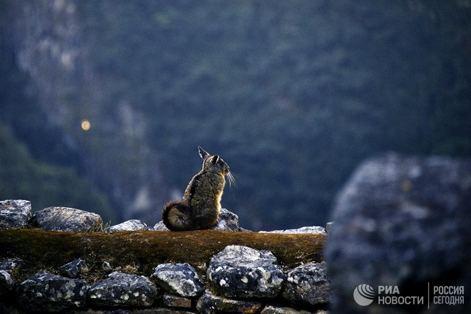 Города мира. Мачу-Пикчу