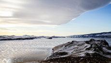 Путешественники отправились на Байкал для спасения ирбиса