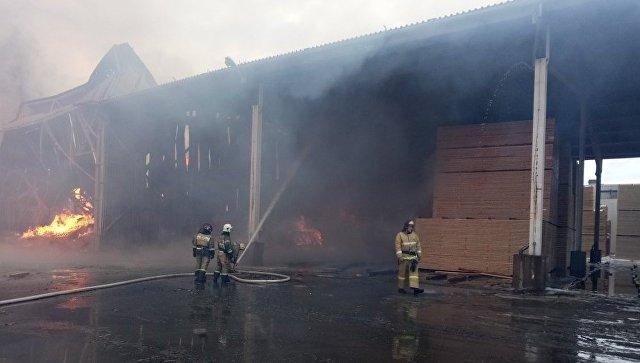Пожар на деревообрабатывающем предприятии в Ленобласти локализовали