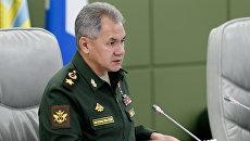 Министр обороны генерал армии Сергей Шойгу. Архивное фото