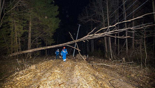 Восстанавление электроснабжения в Подмосковье после сильного ветра. 22 апреля 2018