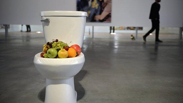 Выставки и проекты в музее Гараж