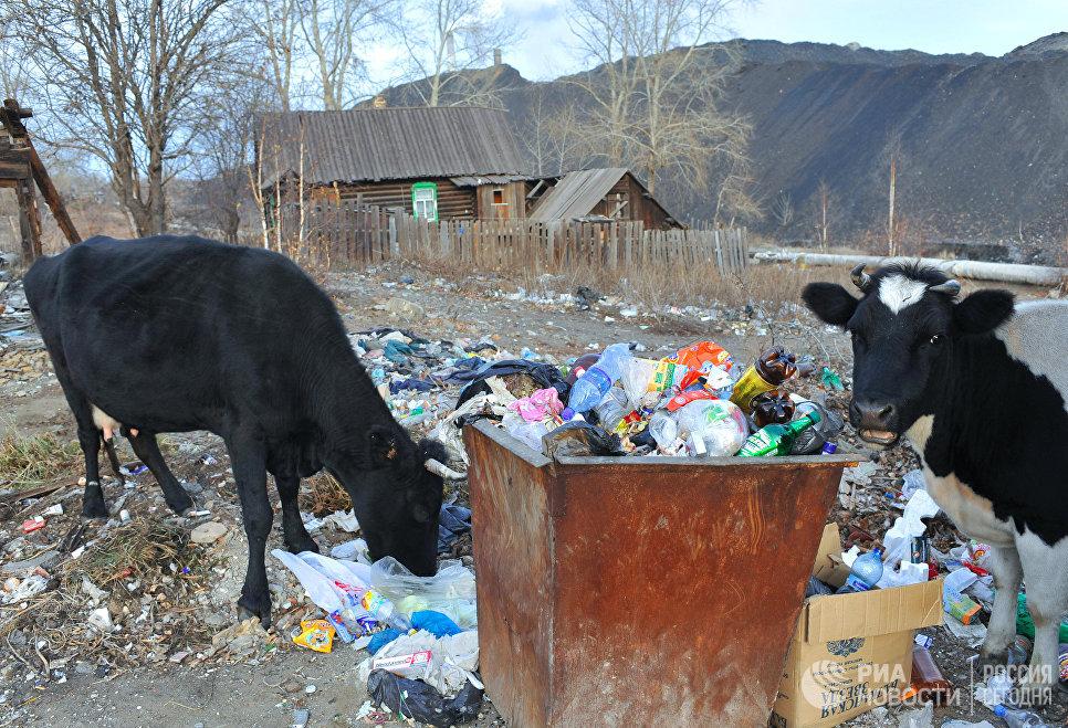 Виды города Карабаш Челябинской области