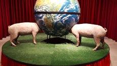 Экспонат на выставке в Центре Искусств Санта Текла, Оспиталет-де-Льобрегат (Каталония, Испания). 16.06.2018