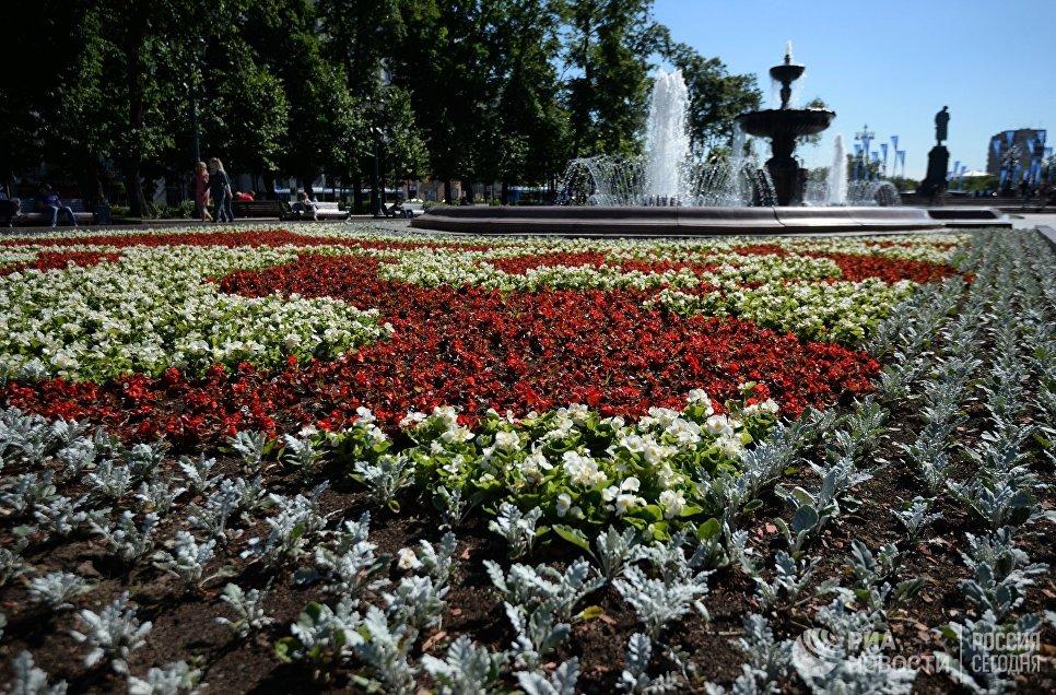 Цветник на Пушкинской площади в Москве