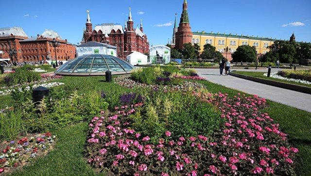 Цветник на Манежной площади в Москве. Архивное фото