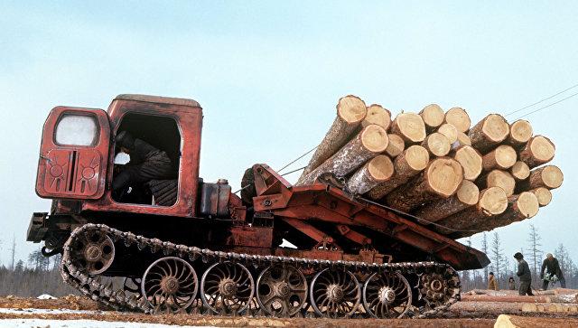 Трелевочник на заготовке древесины. Архивное фото
