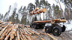 Рубка леса в Челябинской области. Архивное фото
