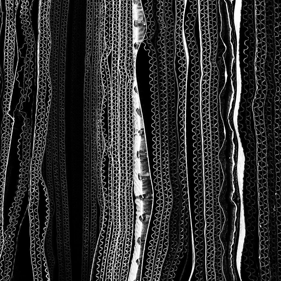 Работа фотографа Glenn Homann из Австралии Corrugations, занявшая первое место в категории Абстракция в фотоконкурсе 2018 iPhone Photography Awards