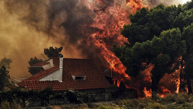 В Греции из-за лесных пожаров погибли 50 человек