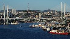 Вантовый мост во Владивостоке. Архивное фото